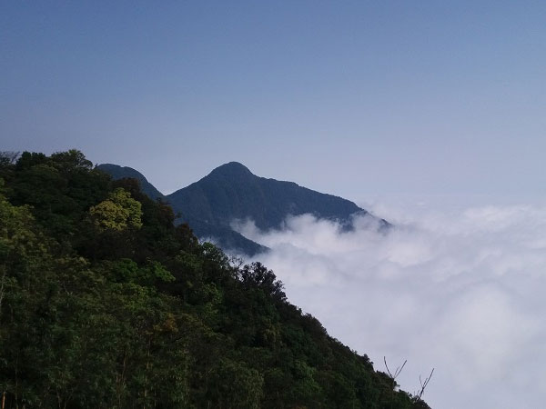 Tam Dao Trekking Tour 2 days