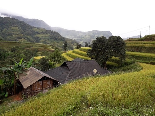Hoang Su Phi - Bac Ha Market- Sapa trekking tour package 4 days
