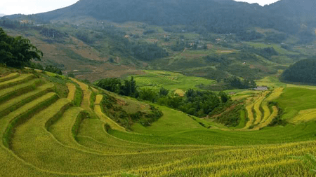 Authentic Homestay Sapa Tour By Bus - 2 Days