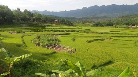 Trekking & Biking Mai Chau Tour 2 days