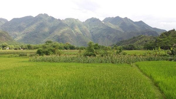 Mai Chau - Ninh Binh Tour Package 3 Days