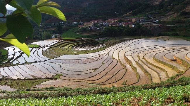 Sapa - Mu Cang Chai Tour 4 days
