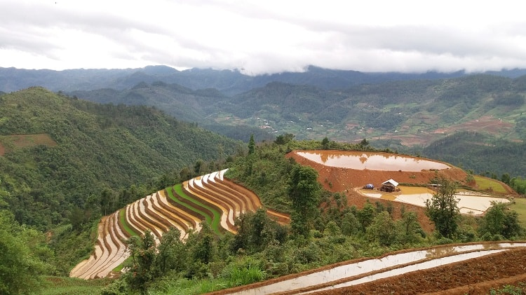 Intensive Mu Cang Chai Tour 4 days