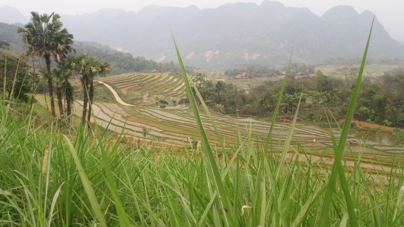 Pu Luong Nature Reserve Trekking Tour 2days1111