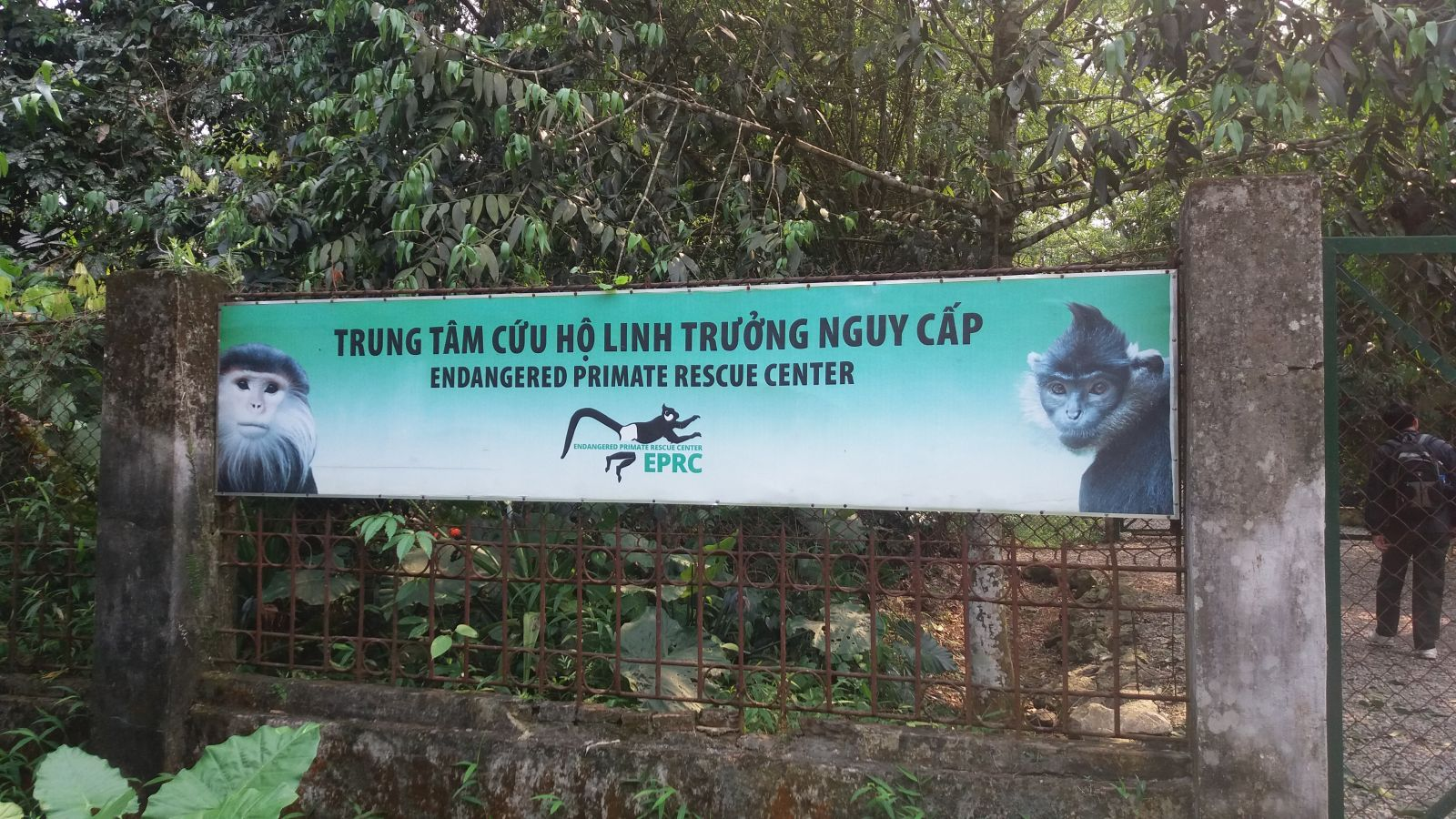Cuc Phuong national park1