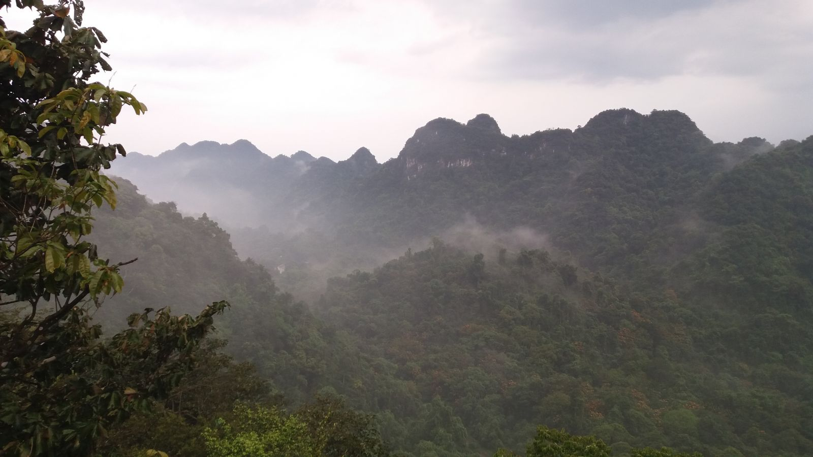 Cuc Phuong National Park - view