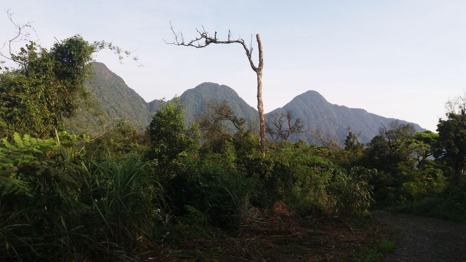 Tam Dao Trekking Tour -ST