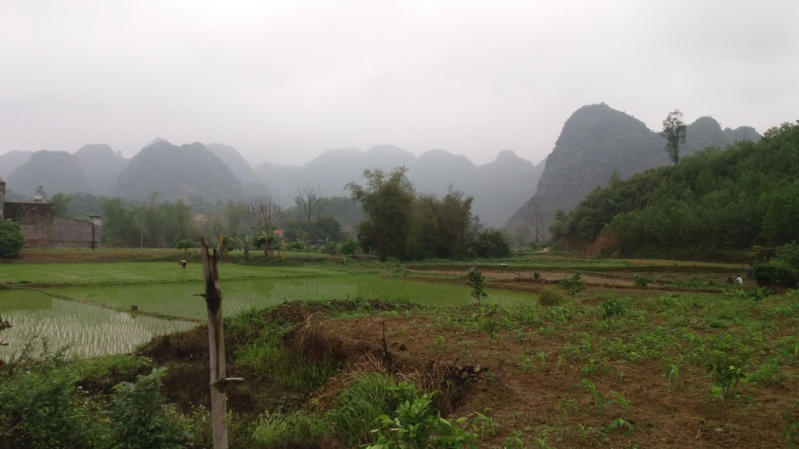Bac Son Travel experiences--view