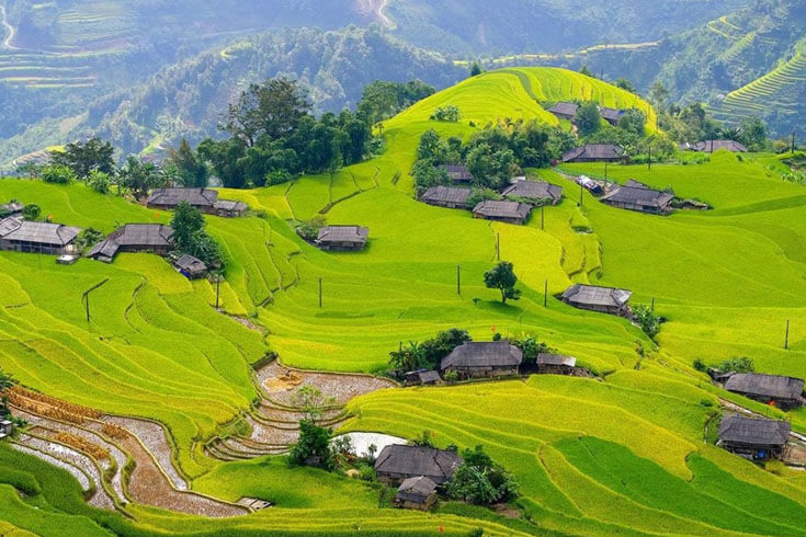 Ha Giang rice terraces - things to do in Vietnam