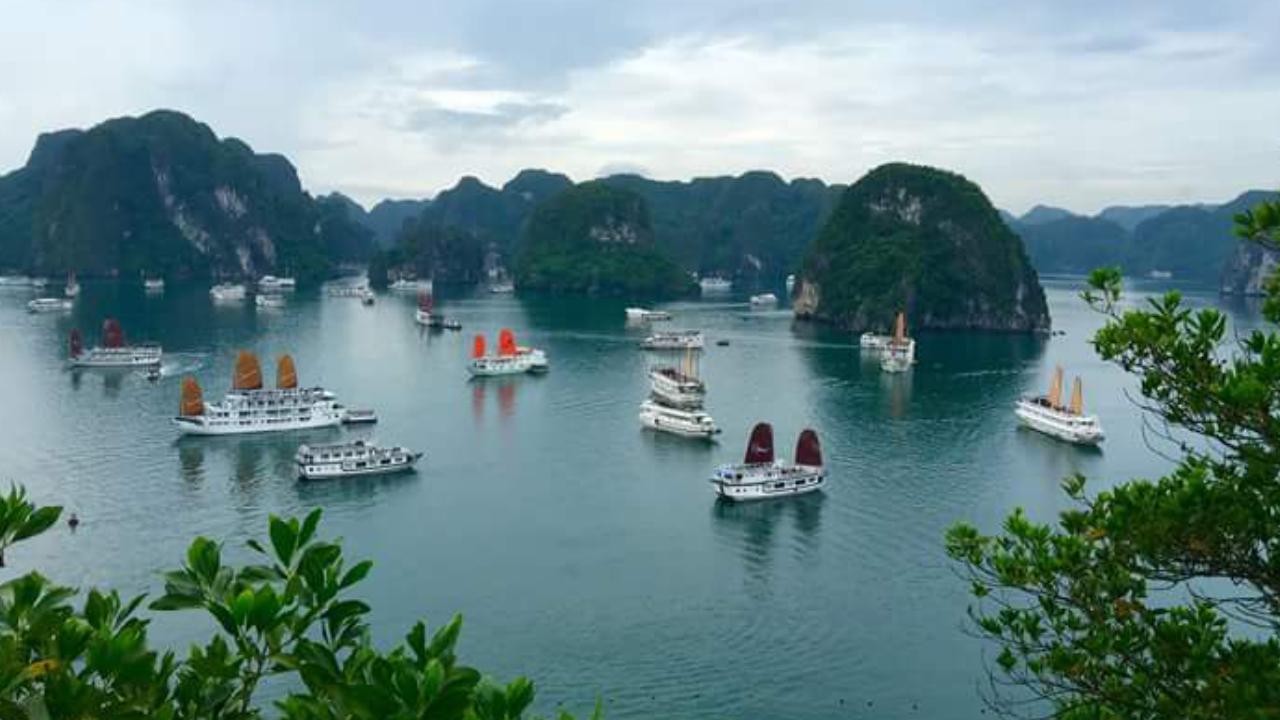 Kong-Skull-Island Halong bay11