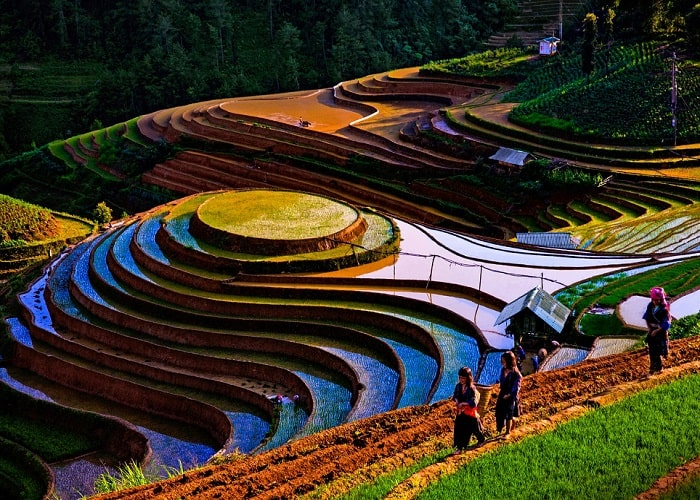 Mu Cang Chai rice terraces - falling water time