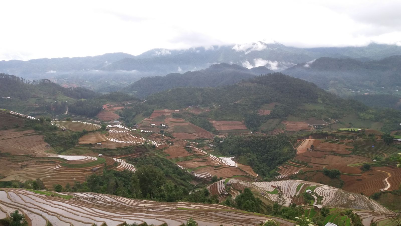 Mucangchai trekking tour21