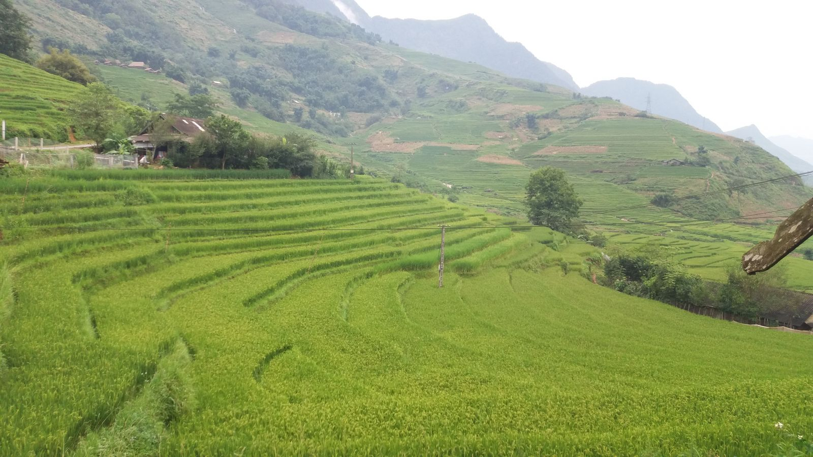North Vietnam Tour -Sapa