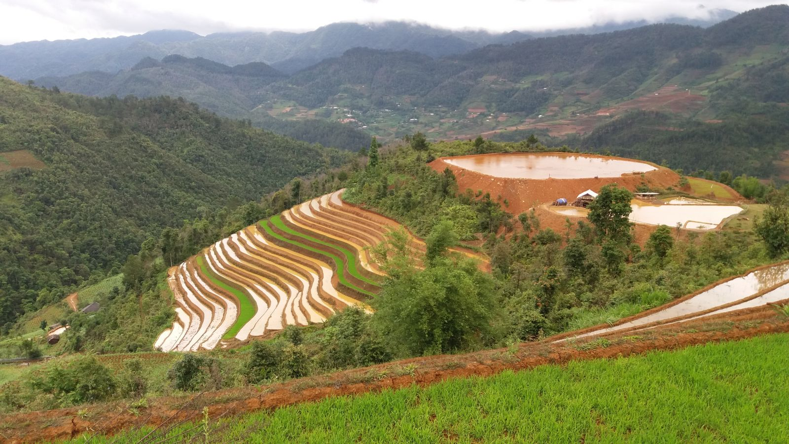 Rice terraced fields in Mu Cang Chai