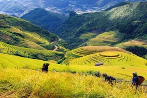 Adventure Vietnam Tour