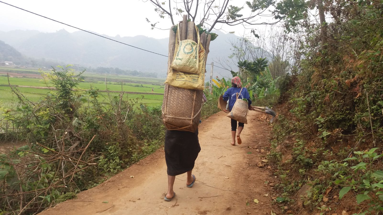 Tour in Mai Chau- local transport basket