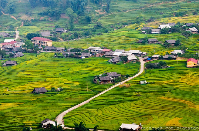 Muong Hoa valley - Sapa trek