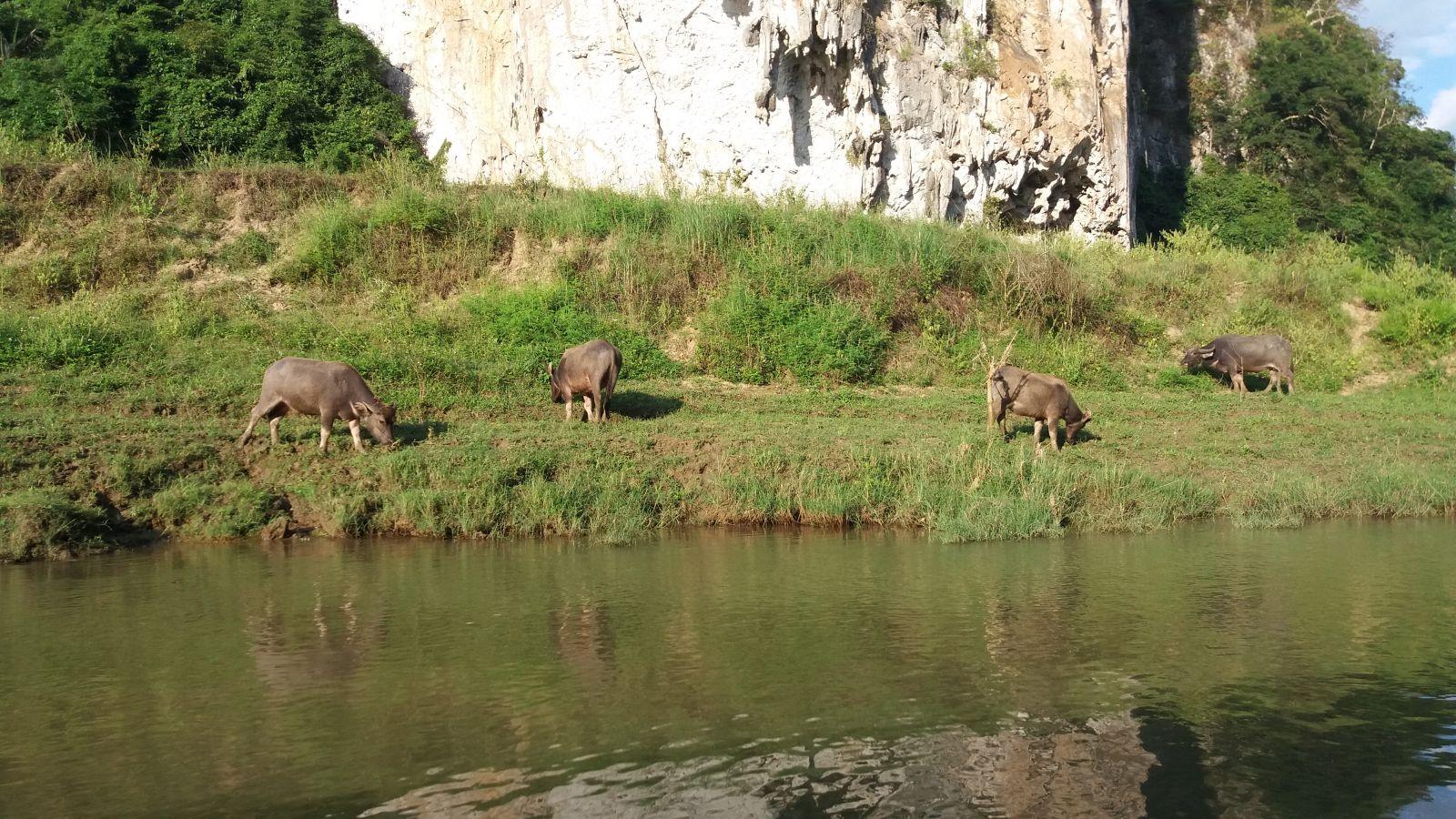 Nang river-babe lake