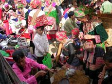 Sapa Tours-Bac Ha Market