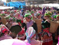 Sapa Tours-Bac Ha Market01