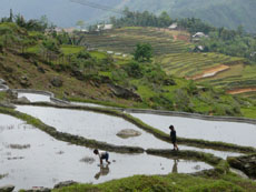 Sapa Tours-Lao Chai Village12