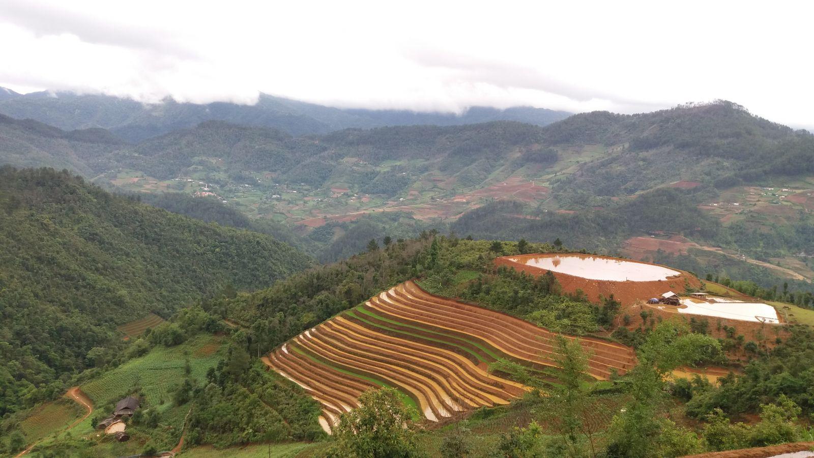 mu cang chai-tour-trekking