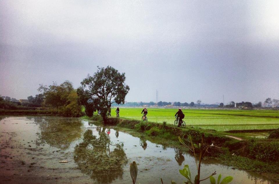 Ninh Binh cycling trip