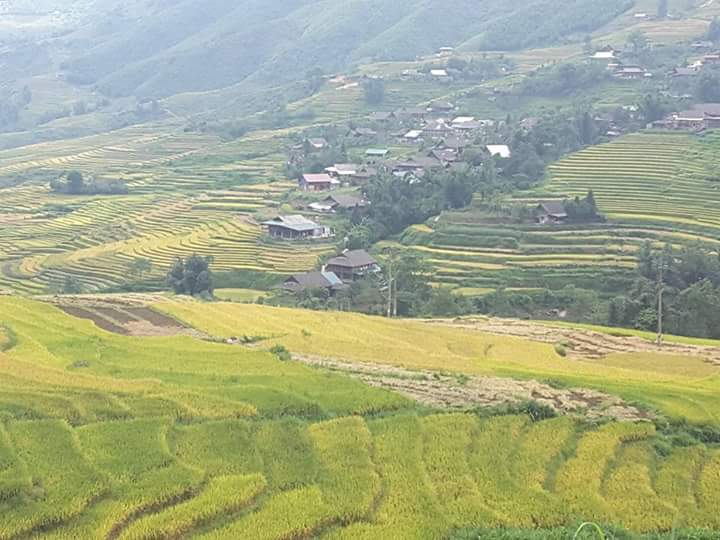 places to visit in Mu Cang Cang Chai-Tu Le valley