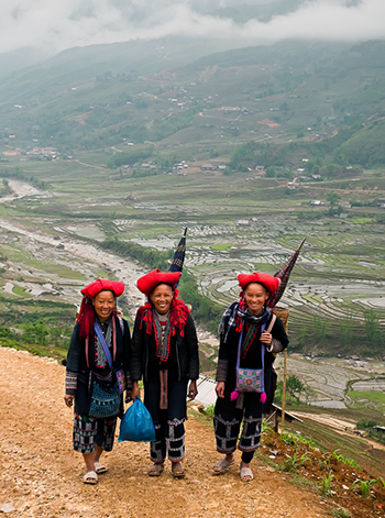 Sapa Tours-Sapa Valley