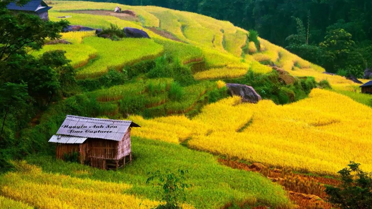 Hagiang attractions-Hoang su phi